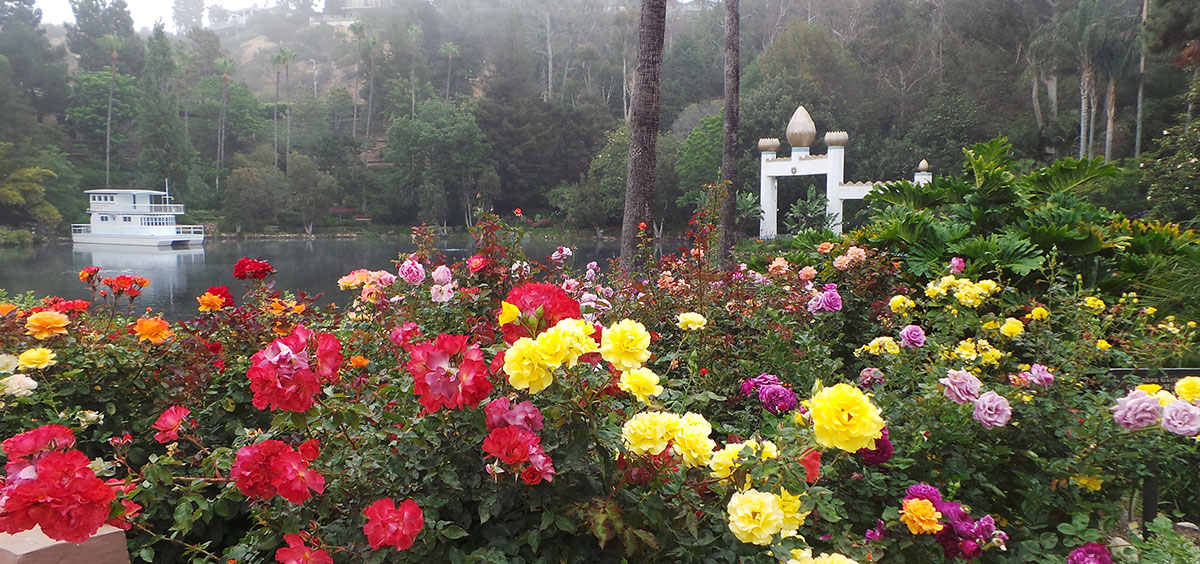 Lake Shrine-Gandhi World Peace Rose Garden