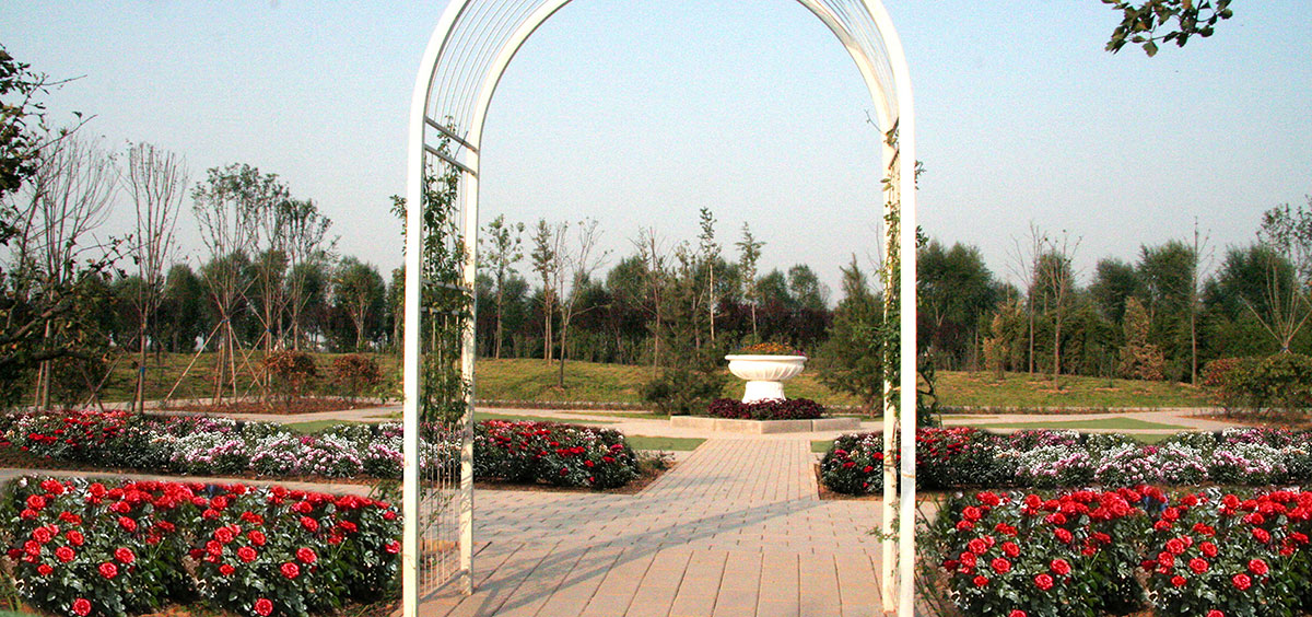 Jinan-Sacramento Sister City World Peace Rose Garden