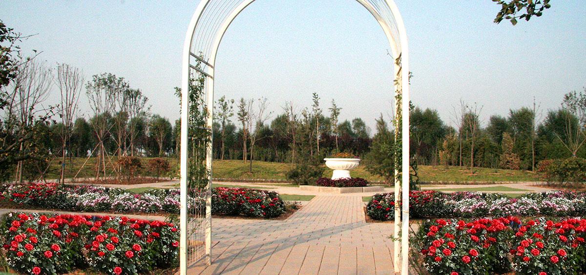 Jinan China Rose Garden