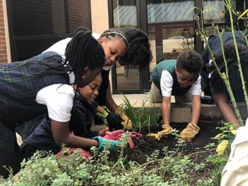 Create a garden - Decatur Georgia