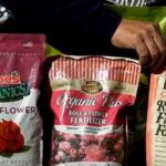 Best Rose Fertilizers