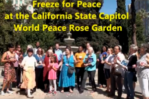 Freeze For Peace Activity