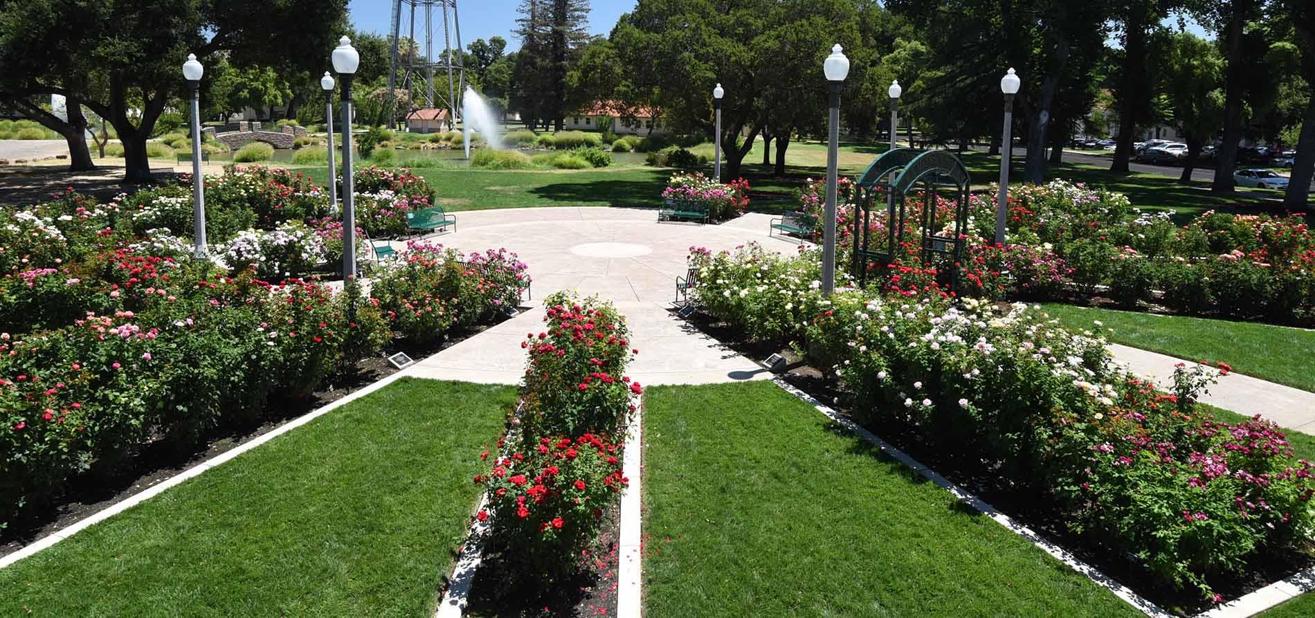 Sister Garden: University Park World Peace Rose Garden