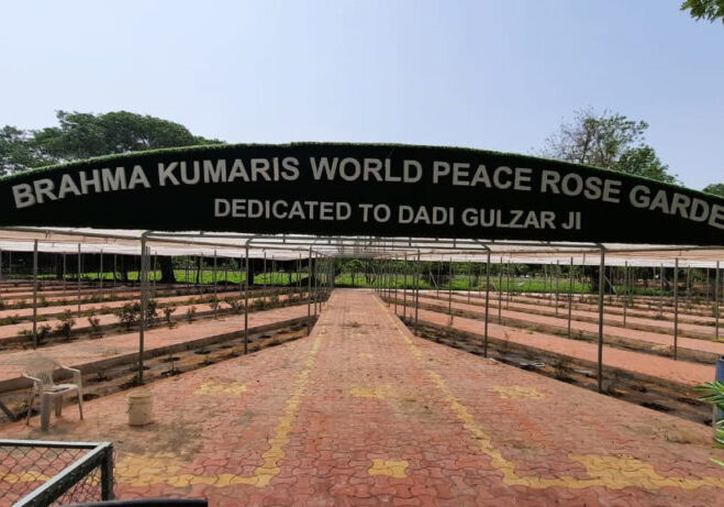 Brahma Kumaris International Rose Garden
