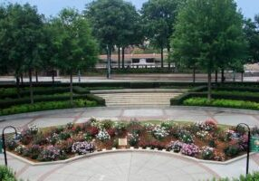 Martin Luther King rose garden
