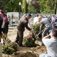 men in suits with shovels are planting roses