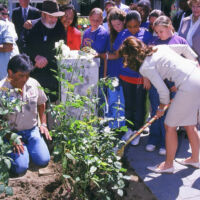 children and adults are watching Maria Shriver plant her rose